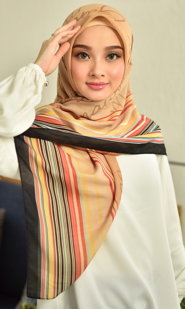 Gradation Stripe Scarf